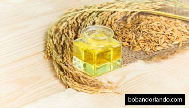 The Benefits of Rice Bran Oil are Good for the Skin